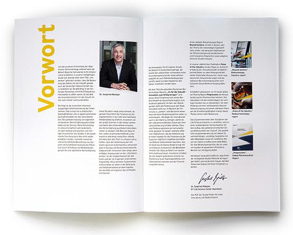 Ernst & Young, Geschaeftsbericht